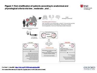 Risk stratification of patients according to anatomical and physiological condition
