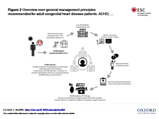 Overview over general management principles recommended for adult congenital heart disease patients